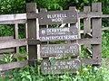 Bluebell Wood - geograph.org.uk - 1343055.jpg