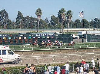Bay Meadows Racetrack - Bay Meadows 6th Race on Saturday, August 16, 2008.