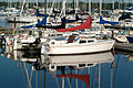 Boats in Frenchman's Bay by the Nautical Village, Pickering.jpg