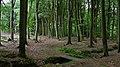 Boerskotten - panoramio.jpg