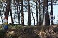 Bosque de Hirosima 02-07.jpg