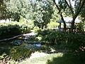 Botanička bašta Jevremovac 079.JPG