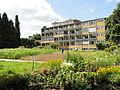 Botanischer Garten, Frankfurt am Main - DSC02742.JPG