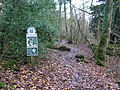 Bottoms Wood - geograph.org.uk - 1596315.jpg