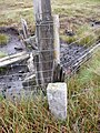 Boundary Stone on fence line on Yad Moss - geograph.org.uk - 1444980.jpg