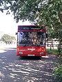 Bowers Bus L172EKG 62 at Hayfield.jpg