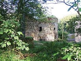 Руины замка Брааль