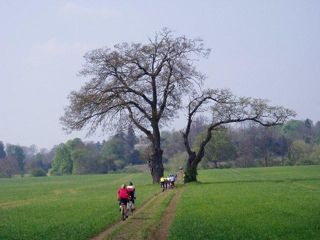 Bridleway in Ettington, Warwickshire