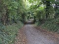 Bridleway to Durstone Cottages - geograph.org.uk - 1006035.jpg