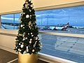 Brisbane Airport, Virgin Blue Domestic Terminal at Christmas 2016, 02.jpg