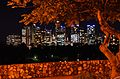 Brisbane Lights at Night from Kangaroo Point.jpg
