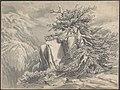 Broken Tree in Moutainous Landscape MET DP803716.jpg