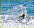 Broken Wave, Big Sur, Chris (13387801713).jpg