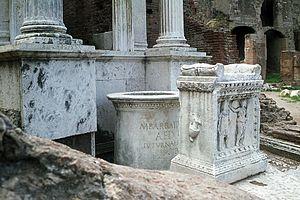 Lacus Juturnae - View of the Lacus Juturnae in Rome