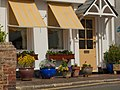Budleigh in Bloom - panoramio.jpg