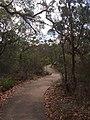 Bungoona Lookout - panoramio (2).jpg