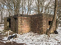 Bunkers radar stelling Löwe in de winter 8.jpg