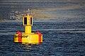Buoy in Hamburg Port, 2016 (25769278522).jpg