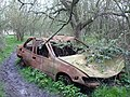 Burnt out wrecked car on the footpath opposite Cellar Hill - geograph.org.uk - 727877.jpg