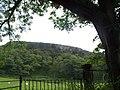 Bute, St. Blane's Hill - geograph.org.uk - 196459.jpg