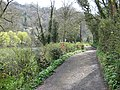 Byway, Symonds Yat West - geograph.org.uk - 757328.jpg