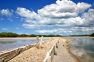 Cabo Rojo National Wildlife Refuge - Cabo Rojo Salt Flats