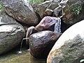 Cachoeira Rio Anil - panoramio (1).jpg