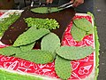 Cactus Plants, Yummy - panoramio.jpg
