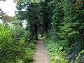 Cameron Lake Trail - panoramio - R. Sieben.jpg