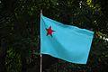 Campusfrontflag.jpg