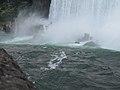 Canadian Falls, Niagara Falls (470563) (9447220189).jpg