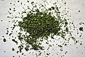 Cannabis sativa preparation for joint (07).jpg
