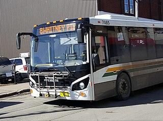 Transit Cape Breton