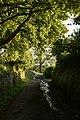 Cardross Evening (7982691906).jpg