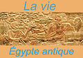 Cartouche vie Égypte.jpg