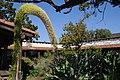 Casa de Estudillo courtyard 05.jpg