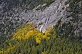 Cascade Falls - Banff - panoramio (1).jpg