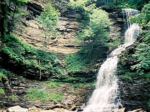 Fayette County, West Virginia - Cathedral Falls