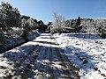 Cellecs amb neu,hivern 2018(13 febrer).jpg