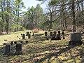 Cemetery, Coldbrook Springs MA.jpg