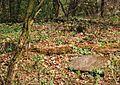 Cemetery (ev.) in Gorka (gm. Pobiedziska), 23.4.1995r.jpg