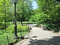 Central Park May 2019 33.jpg