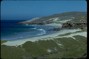 Channel Islands National Park CHIS8069.jpg