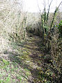 Chemin rural n°34 dit de la Fontaine, Prinvaux, Boigneville 01.jpg