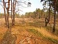 Cherkas'kyi district, Cherkas'ka oblast, Ukraine - panoramio (549).jpg