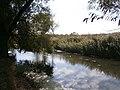 Cherkas'kyi district, Cherkas'ka oblast, Ukraine - panoramio - юра запеченко (50).jpg