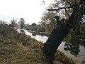 Cherkas'kyi district, Cherkas'ka oblast, Ukraine - panoramio - юра запеченко (80).jpg