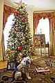 Chesty's Christmas 131216-M-LU710-121.jpg