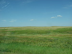 Cheyenne River Indian Reservation - Farmland on the reservation