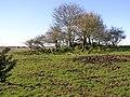 Children's burial ground, Meenatumigan - geograph.org.uk - 126458.jpg